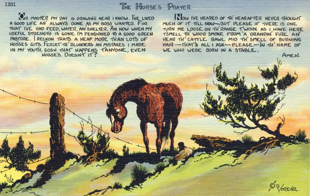 Horse's prayer postcard 1941