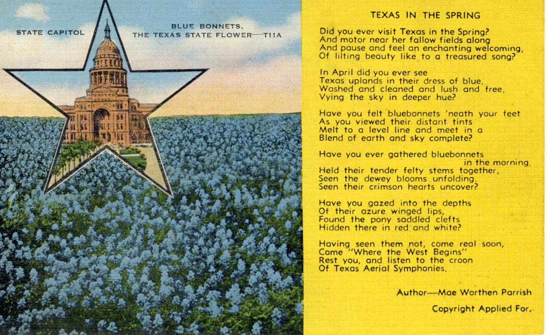 Texas in the spring postcard