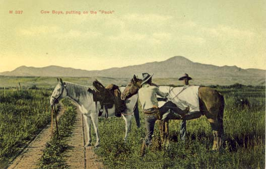 Cow boys, putting on the 'pack', postcard 1900s