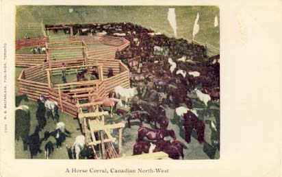 A horse corral, Canadian North-west, [c1900s].
