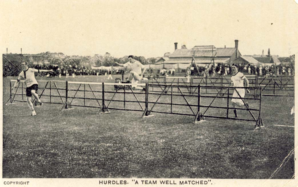 Hurdles - a team well matched postcard