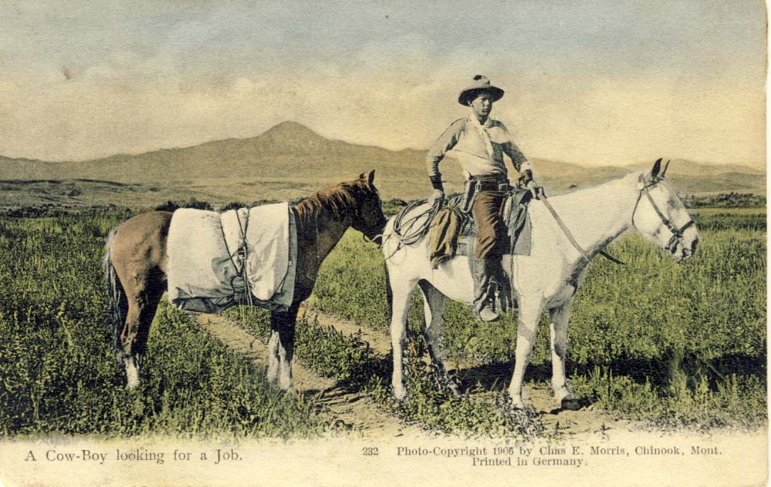 A cow boy looking for a job, postcard 1907