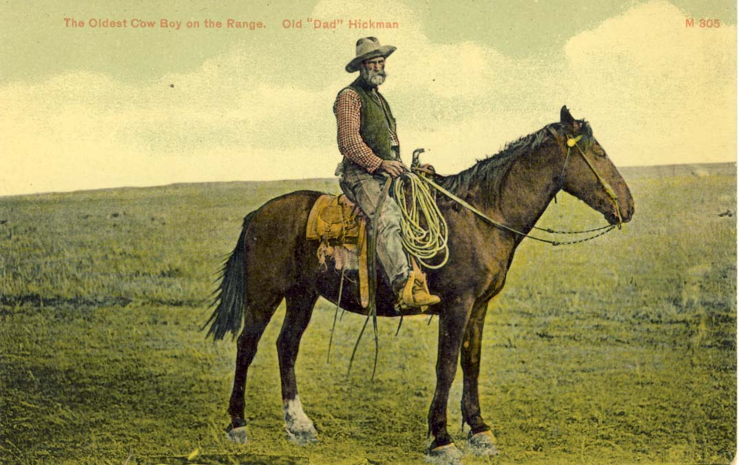 The oldest cow boy on the range, Old 'Dad' Hickman, postcard