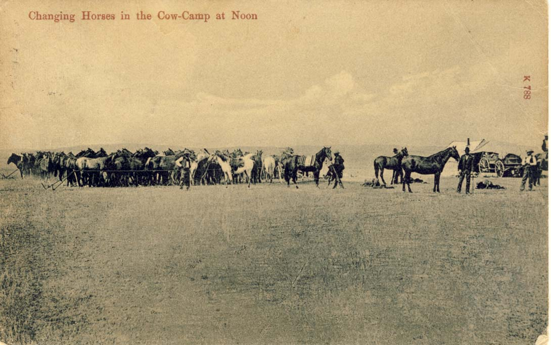 Changing horses in the cow-camp at noon, postcard 1900s