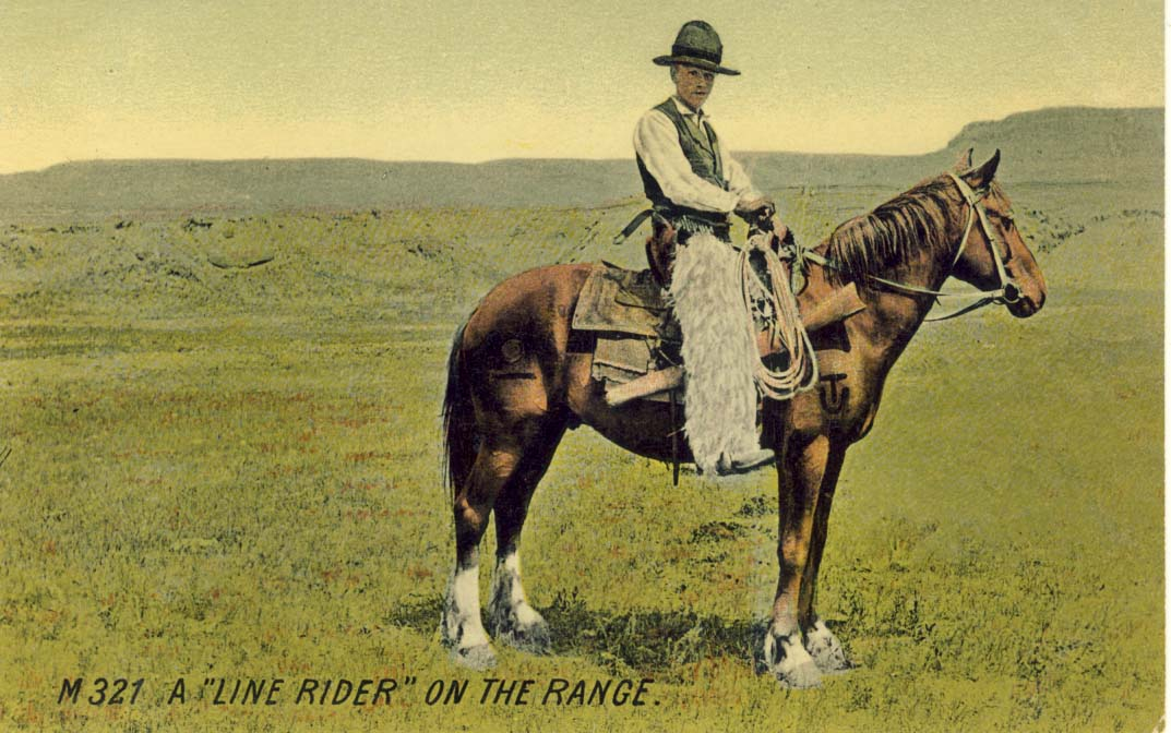 A 'line rider' on the range, postcard