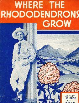 Where the rhododendrons grow, 1936